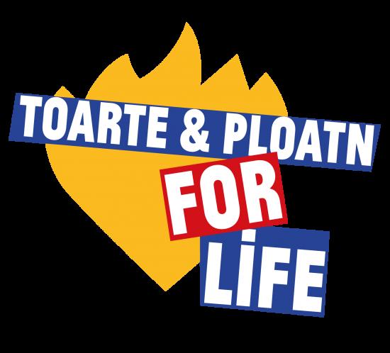 Toarte en Ploatn